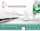 PAPEL HAHNEMUHLE HARMONY WATERCOLOUR, 300 G/M², HOT PRESSED 12fls 24x30cm (10628764)