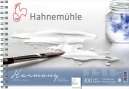 PAPEL HAHNEMUHLE HARMONY WATERCOLOUR 300 G/M², ROUGH 12fls 21X29,7cm C/ESPIRAL - A4 (10628842)