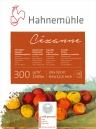 Papel Hahnemuhle Cezanne Textura Fina 300g/m2 24x32 10fls (10628345)