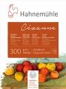 PapeL Hahnemuhle Cezanne Textura Satinada 300g/m2 30x40 10fls (10628366)