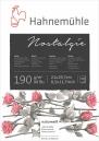 Papel Hahnemuhle Nostalgie 190g/m2 21x29,7 50fls (10628210)