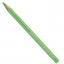 Lápis Maxi Jumbo Fluorescente Carandache 491230 Verde