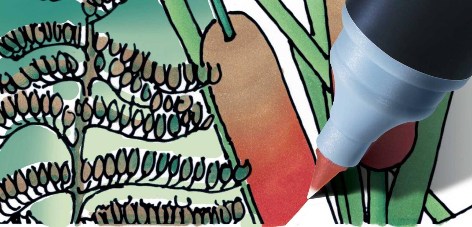 Kit 5 Color Tops Chameleon - Tons de Natureza - Papelaria Botafogo