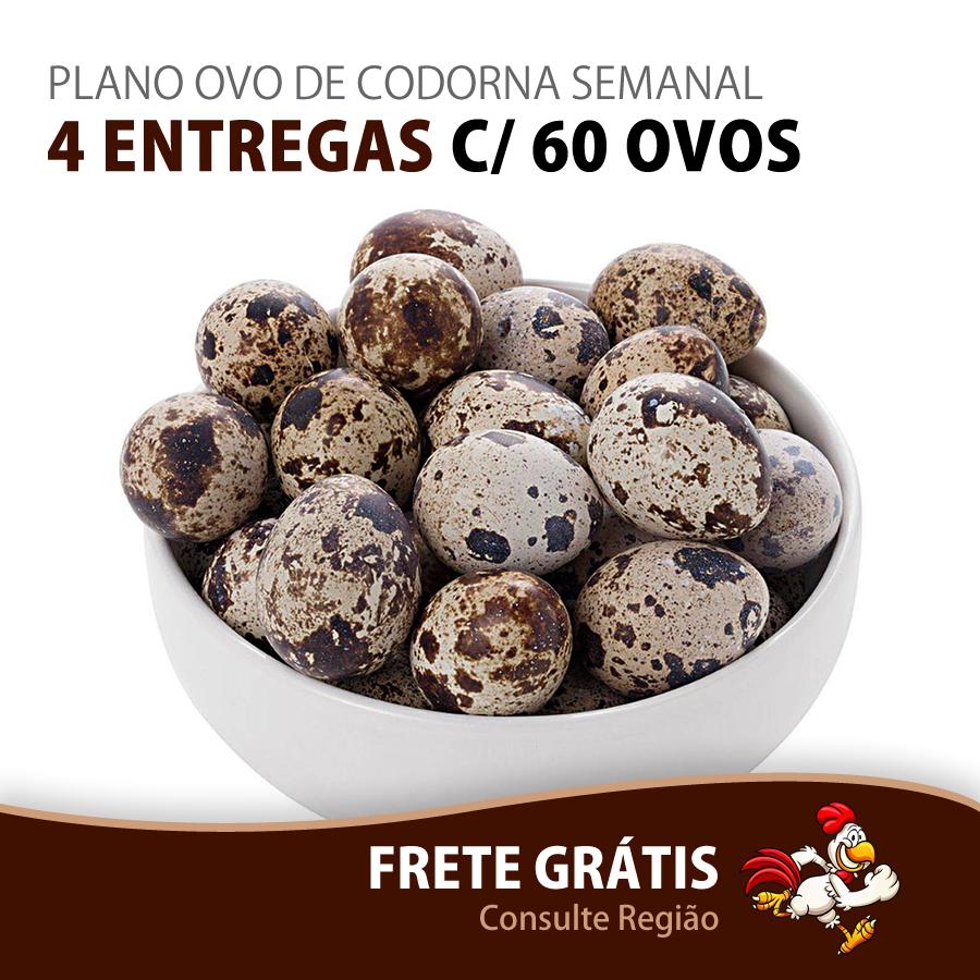 PLANO OVO DE CODORNA SEMANAL - 4 ENTREGAS C/ 60 OVOS - Top Ovos
