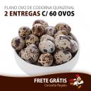 PLANO OVO DE CODORNA QUINZENAL - 2 ENTREGAS C/ 60 OVOS