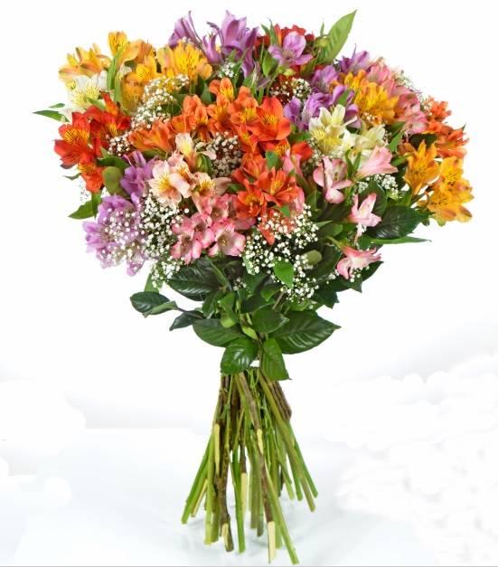Bouquet Arco-Íris - Floricultura Cambuí