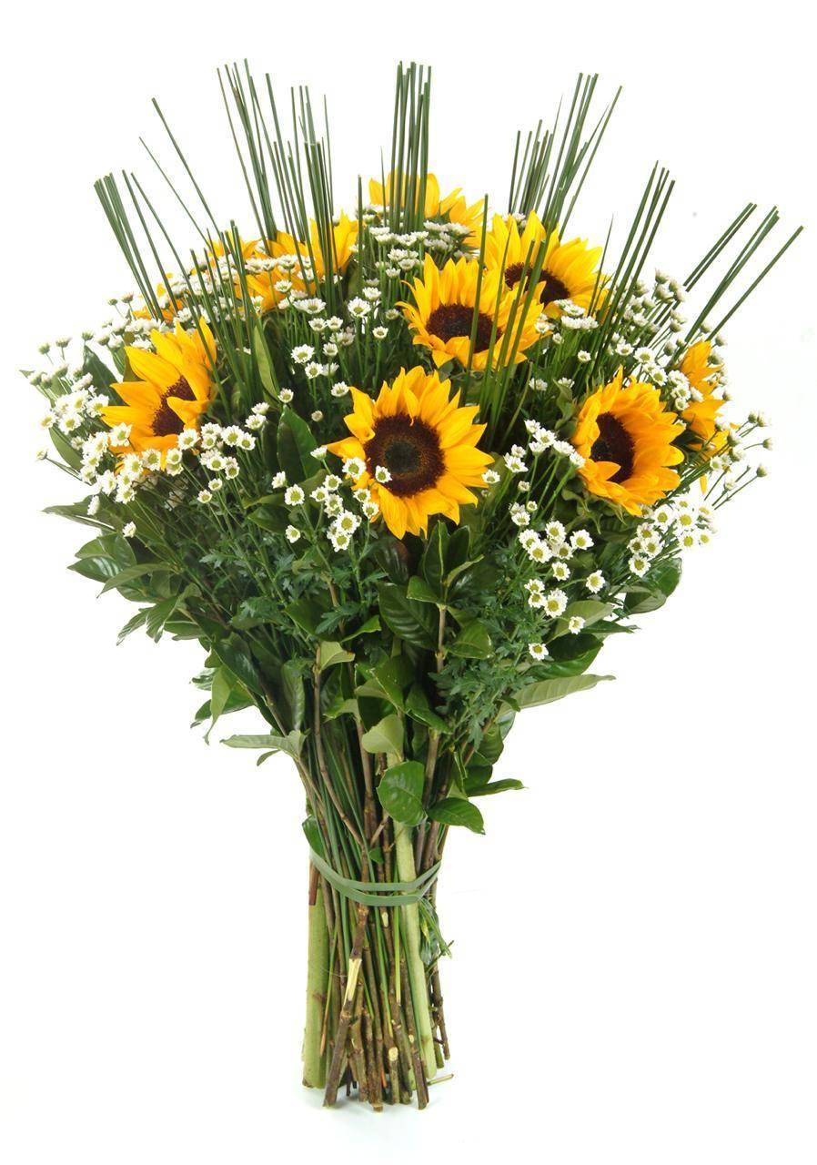 Bouquet Sol da Manhã - Floricultura Cambuí