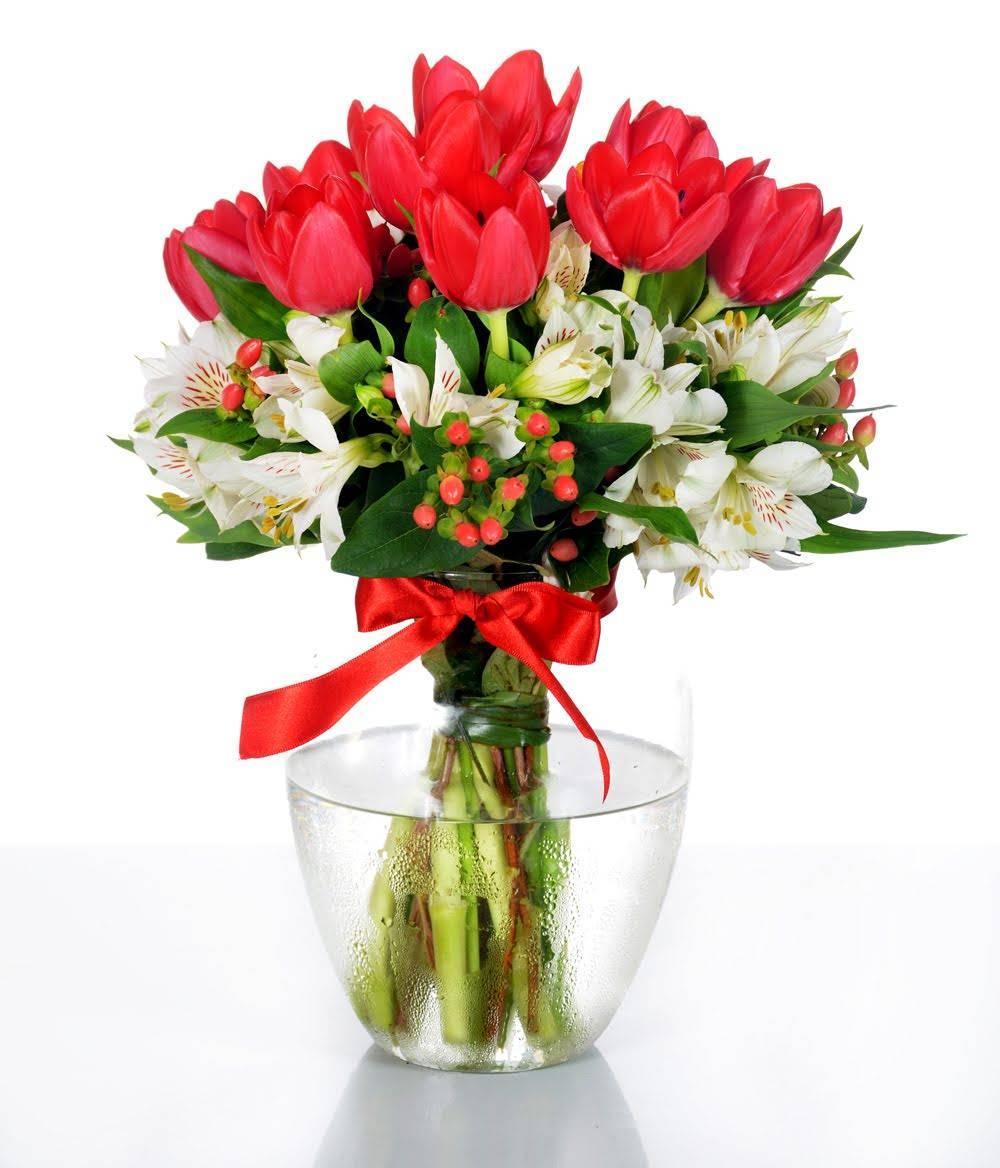 Beleza Vermelho - Floricultura Cambuí