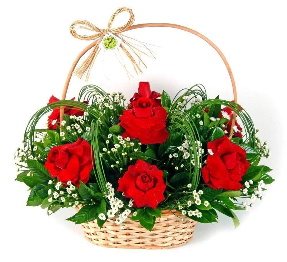 Prazeroso - Floricultura Cambuí