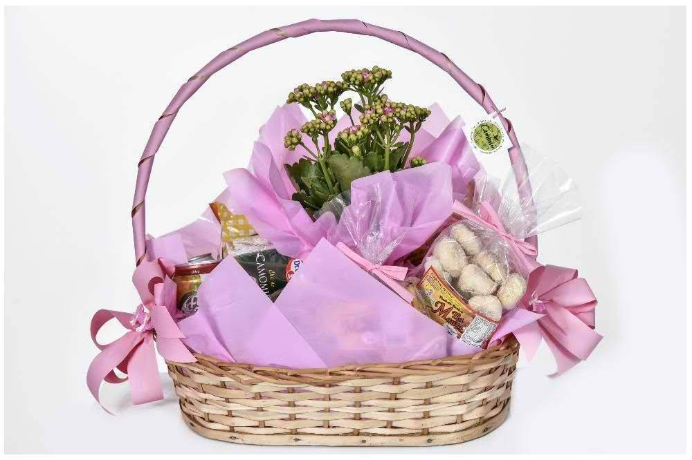 Seja Bem Vinda - Floricultura Cambuí