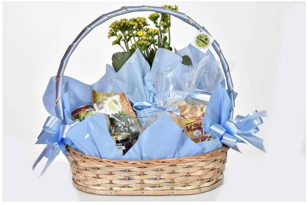 Seja Bem Vindo - Floricultura Cambuí