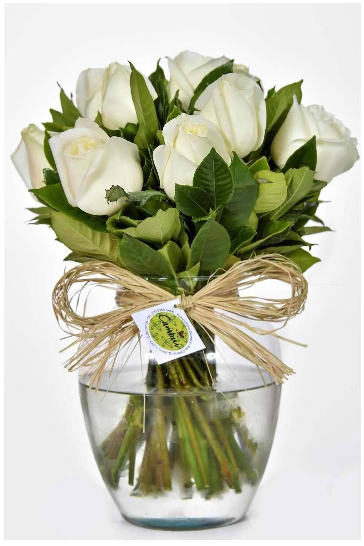 Vida Branco - Floricultura Cambuí