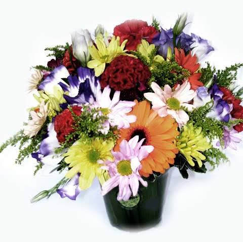 Primavera - Floricultura Cambuí