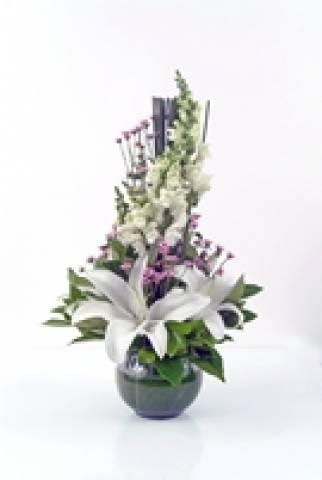 Felicidade - Floricultura Cambuí