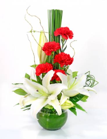 Origem - Floricultura Cambuí