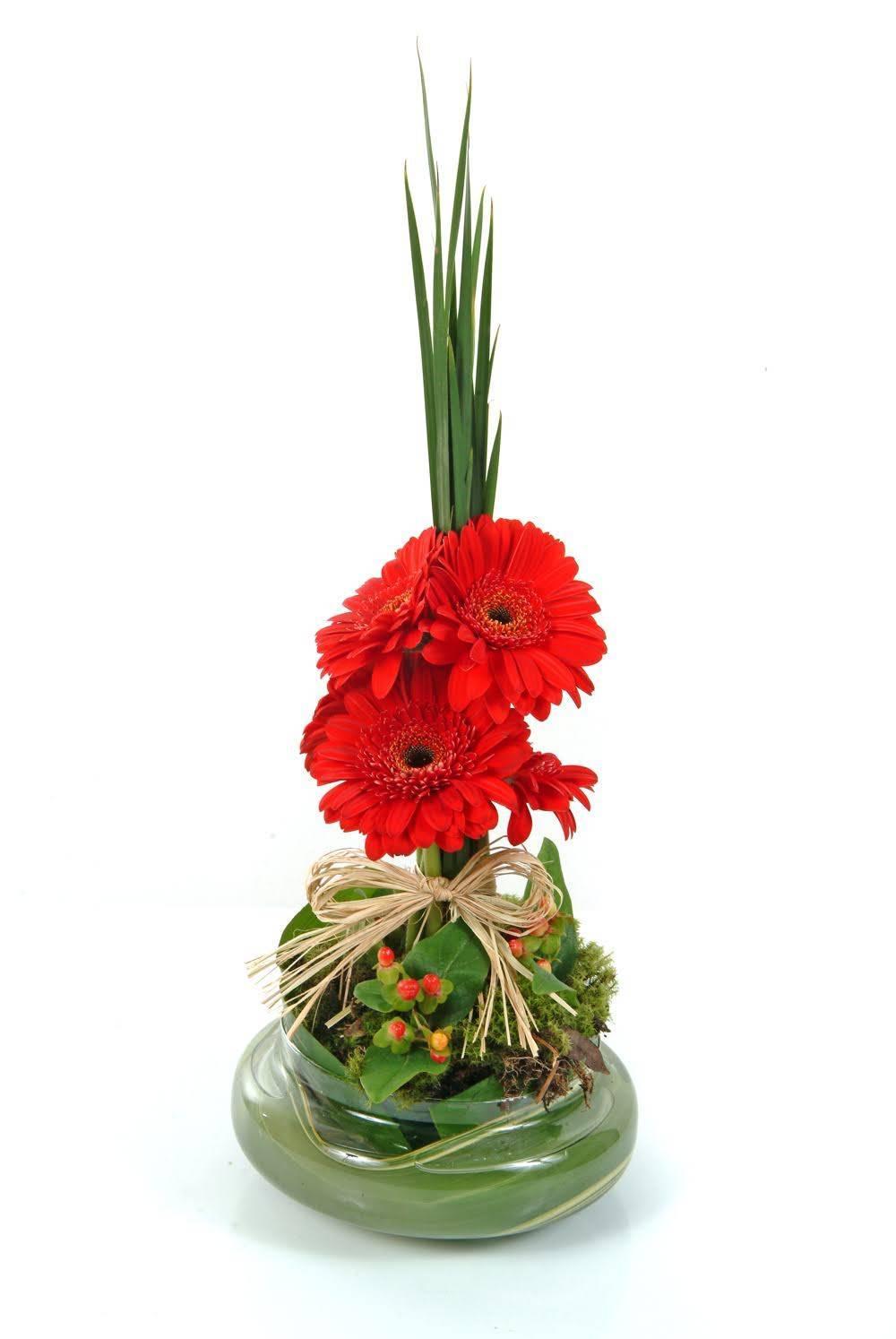 Topiária de Gérbera - Floricultura Cambuí