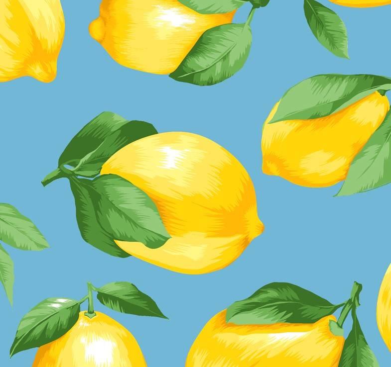 Limão Siciliano fundo azul  - BAÚ DA VOVÓ
