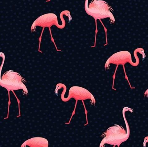 Flamingo Poá - BAÚ DA VOVÓ
