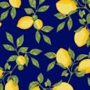 Limão Siciliano Fundo Marinho