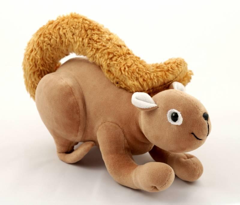 Caxinguelê ou Esquilo Serelepe