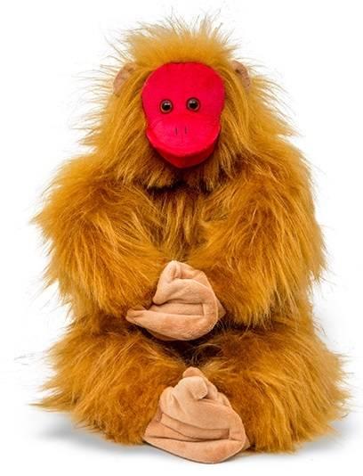 Macaco de Cara Vermelha