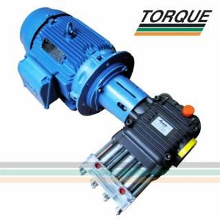 Grupo Motobomba - Motor 25 CV + Bomba HPP CH 25/500 | 25l./min. | 500 bar | 7.250 libras | TORQUE SUL