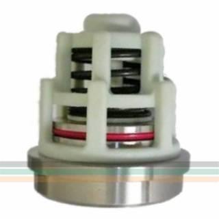 Válvula Aspiração Pratissoli KF COD 36713601 | TORQUE SUL