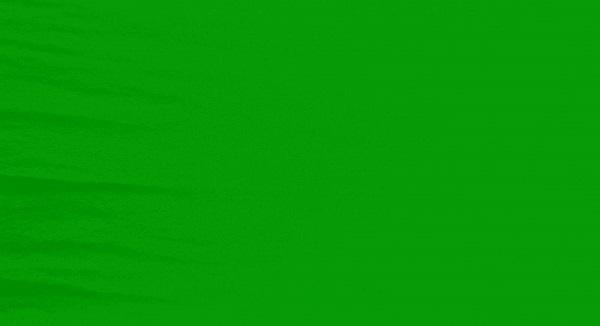 Verde Bandeira - 19