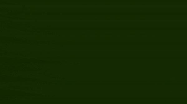 Verde Musgo - 22